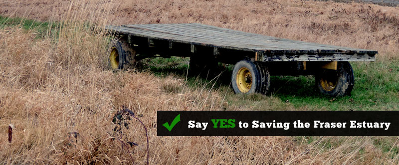 Say YES to Saving the Fraser Estuary