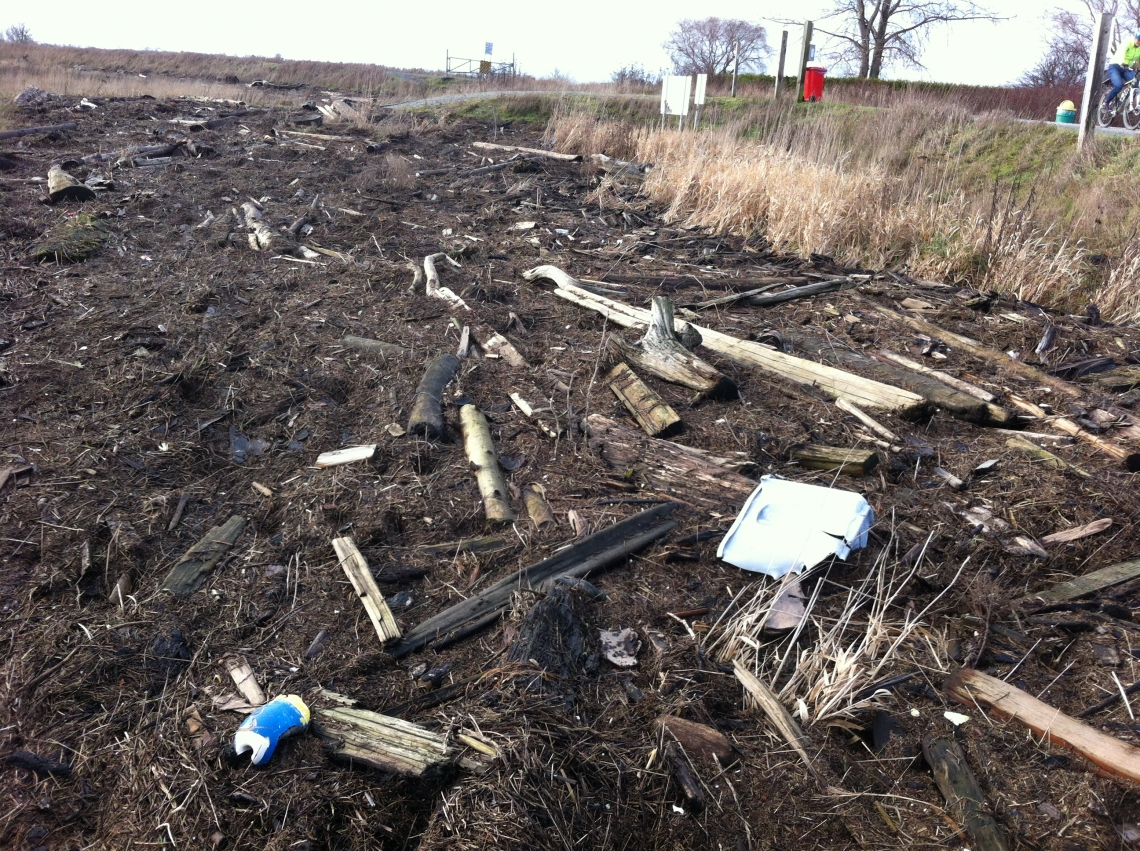 Boundary Bay Log Debris Dec 21 2014.jpg